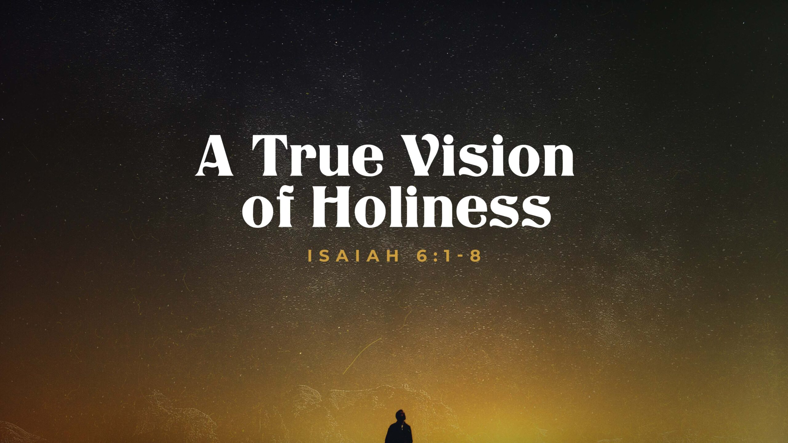 A Vision of Holiness